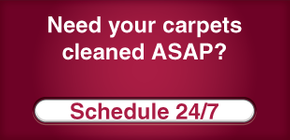Need your carpets cleaned ASAP? Schedule 24/7
